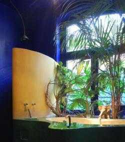 Pflanzen im badezimmer pflanzenfreunde - Badezimmer pflanzen ...