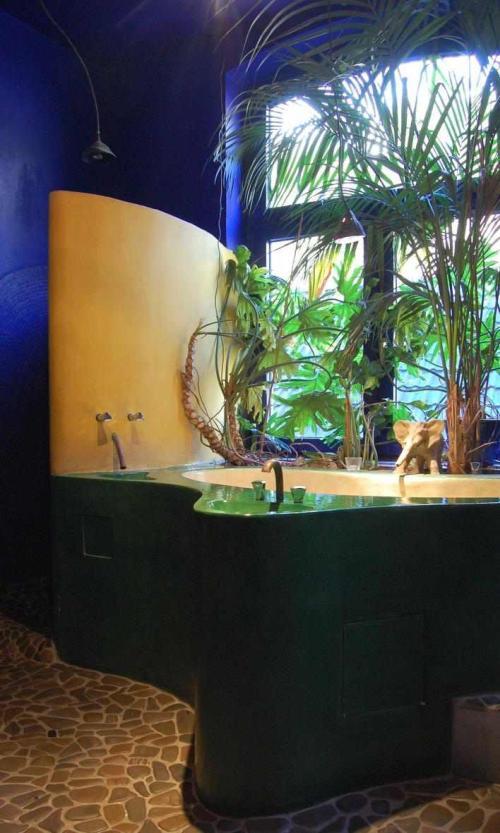 Pflanzen für badezimmer  Pflanzen im Badezimmer - Pflanzenfreunde