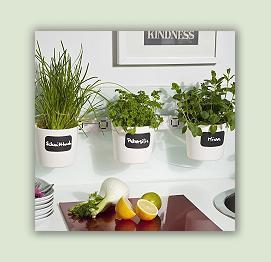 kapuzinerkresse heilpflanzen heilkr uter. Black Bedroom Furniture Sets. Home Design Ideas