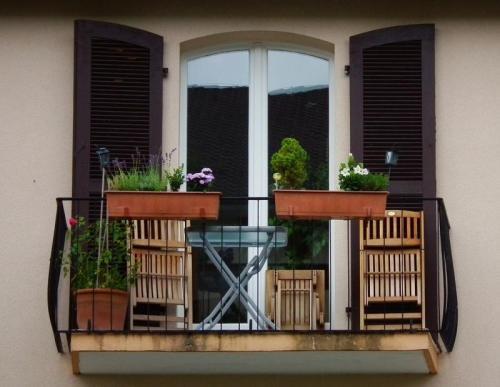 balkon gestalten pflanzenfreunde. Black Bedroom Furniture Sets. Home Design Ideas