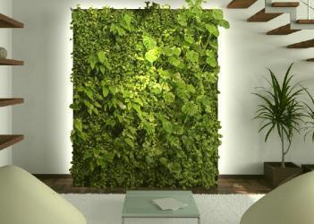die positive wirkung einer gr nen wand pflanzenfreunde. Black Bedroom Furniture Sets. Home Design Ideas