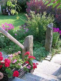 Beete und Gärten - Pflanzenfreunde