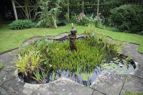 Gartenteich Die Oase Im Garten Pflanzenfreunde