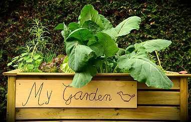 Tipps Fur Die Gartengestaltung In Der Grossstadt