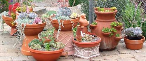 Pflanzkubel Fur Balkon Terrasse Und Garten
