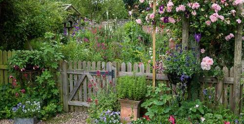 Ein pflegeleichtes Gartenparadies
