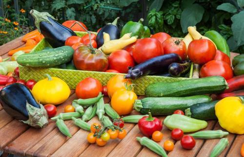 Gemüseanbau im Hochbeet