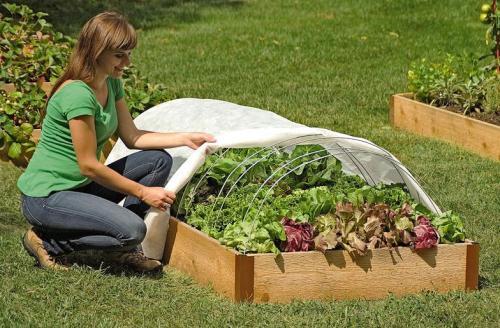 Favorit Wetterschutz für Hochbeete - Pflanzenfreunde UW86